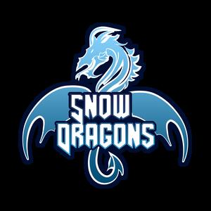 swd_esports Logo