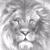 View LionessHeart85's Profile