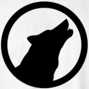 Elwirfy Logo