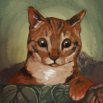 View stats for Meowchado