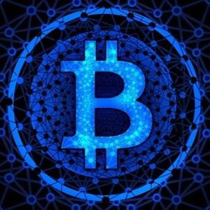 BitcoinLiveWatch Logo