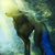 View Asriel_____'s Profile