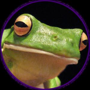 Matombar Logo
