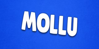 Profile banner for mollu