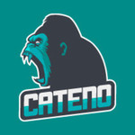 View stats for catenogamer