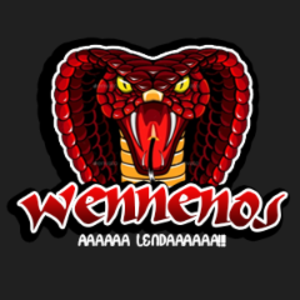 WENNENOS Logo