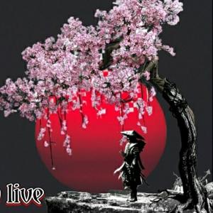shogunstunner Logo
