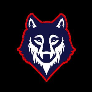 kry5tu5 Logo