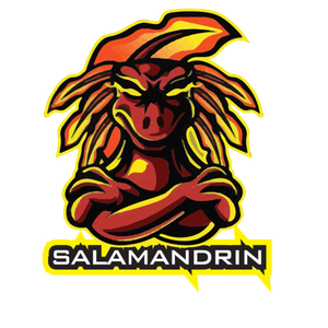 Twitch Image salamandrin21