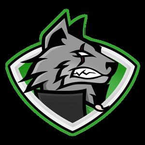 AlfaNMC Logo