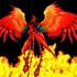 View PhoenixRebirthAsh's Profile