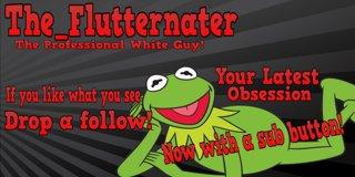 Profile banner for the_flutternater