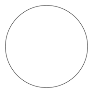 Zeeked Logo