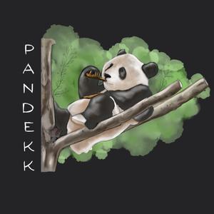 PANDEKK Logo