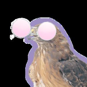 View FlatHawk's Profile
