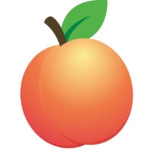 GeorgiaVGC Logo