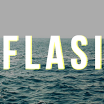 View stats for Flasiii