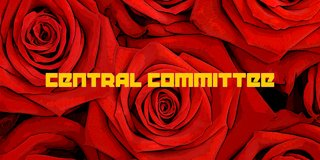 Profile banner for central_committee
