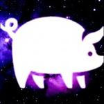View Pigzit's Profile