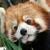 avatar for kfrkfr