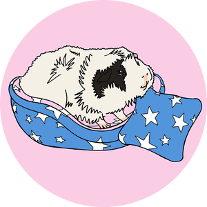 cottonsqueakers Logo