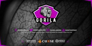 Profile banner for gorilanerd