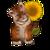 View BabyTigerOnTheSunflower's Profile