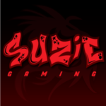 View stats for suziegaming