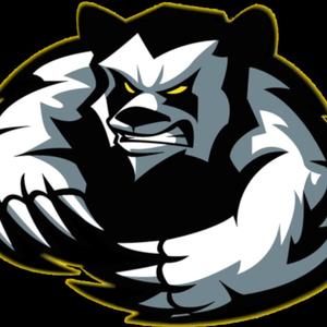 pandariangaming Logo
