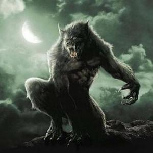 View thewolfssegen's Profile