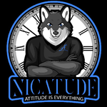 View stats for nicatude