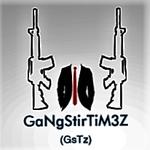 GaNgStirTiM3Z