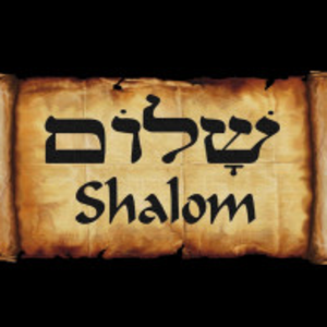 Mahmoud_El_Shalom Logo