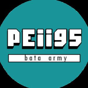 Peii95 Logo