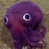 View ChibiCephalopod's Profile