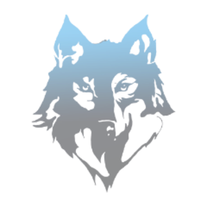 asky_16 Logo