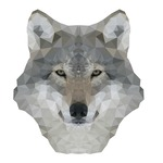 View stats for ForrestWolf