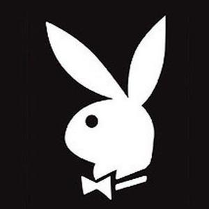 s_p_e_e_d_o Logo