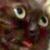 avatar for teyka