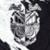 avatar for blkdragon27