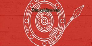 Profile banner for deusaminervex