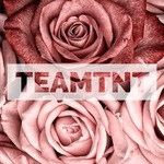 View stats for TeamTNT