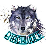 View stats for B1ackWulf