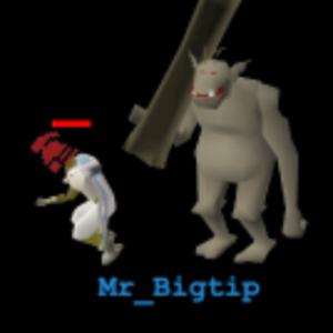 mr_bigtip Logo