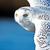 View owlguyyyyyyyyyyyy's Profile