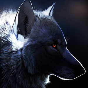 View anathematizedwolf's Profile
