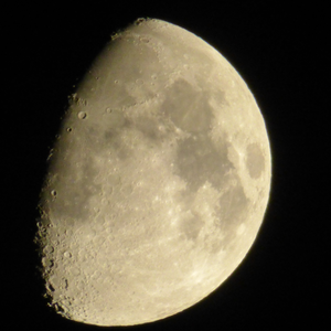 pog_moon