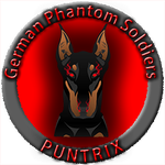 View stats for PunTriX
