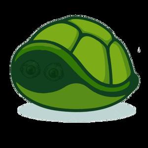 Crazy_Turtles Logo