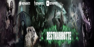 Profile banner for bestmarmotte